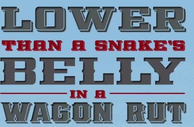 snakes elly