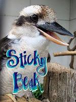 0742f-stickybeak