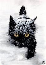 cat -Snow…-By-lenazlair-150x214