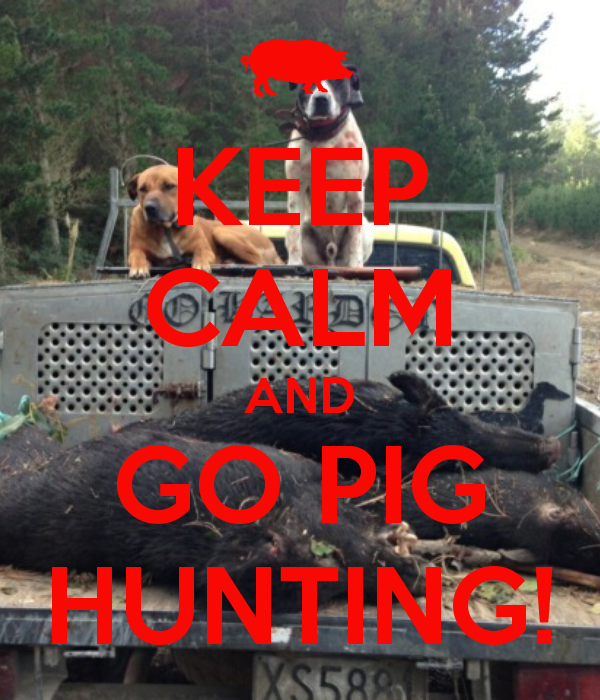 keep-calm-and-go-pig-hunting
